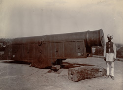 Great Gun at Deeg Fort